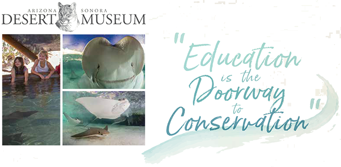 Educating is the Doorway to Conservation