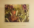 Thumbnail of Nick Wilson - American Wildlife - circa 1970s