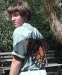 Picture of boy wearing butterfly wings