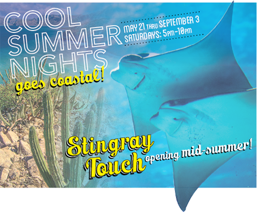 Cool Summer Nights goes coastal! May 21 thru September 3, Saturdays: 5pm-10pm. Stingray Touch opening this summer!