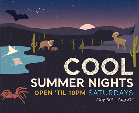 Cool Summer Nights Open til 10 Saturdays May 18th to August 31st