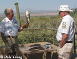 Docents with barn owl