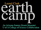 Earth Camp