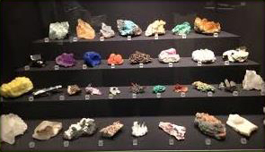Selection of mineral specimens in display case