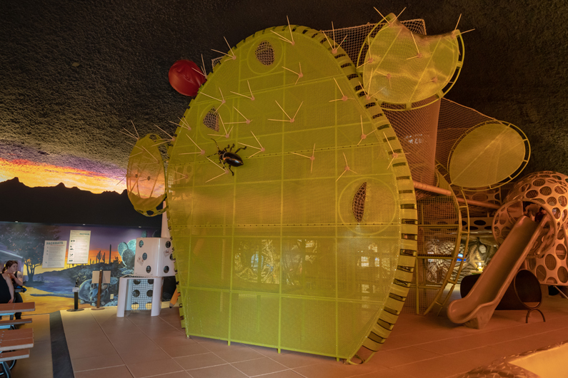 Interior of Packrat Playhouse showing giant prickly pear climbing structure