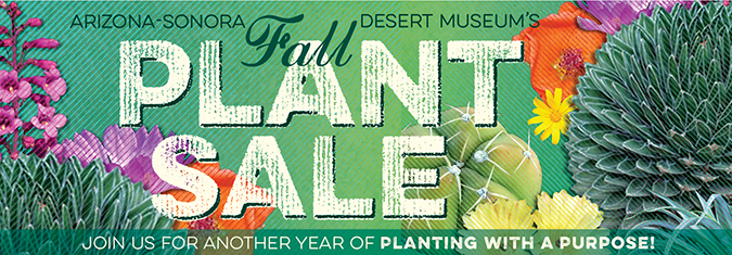 Desert Museum Annual Plant Sale Join us for another year of Planting with a Purpose!