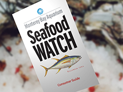 Seafood Watch Guide
