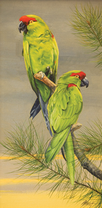 Edward Aldrich painting of two thick-billed parrots on a tree branch