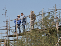 Exhibits staff on scaffolding at rear of exhibit