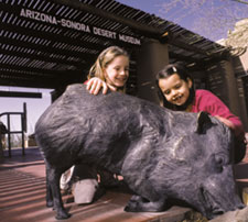 Two young girls playing with the bronze javalinas on the front patio