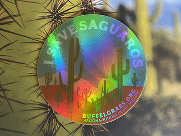Holographic I Save Saguaros sticker in front of a saguaro