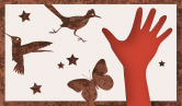 Hand surrounded by butterfly, roadrunner and hummingbird - illustration