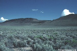 Great Basin Desert image gallery