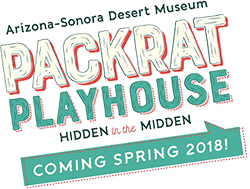 Packrat Playhouse: Hidden in the Midden. Coming Spring 2018!