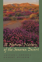 Cover: A Natural History of the Sonoran Desert