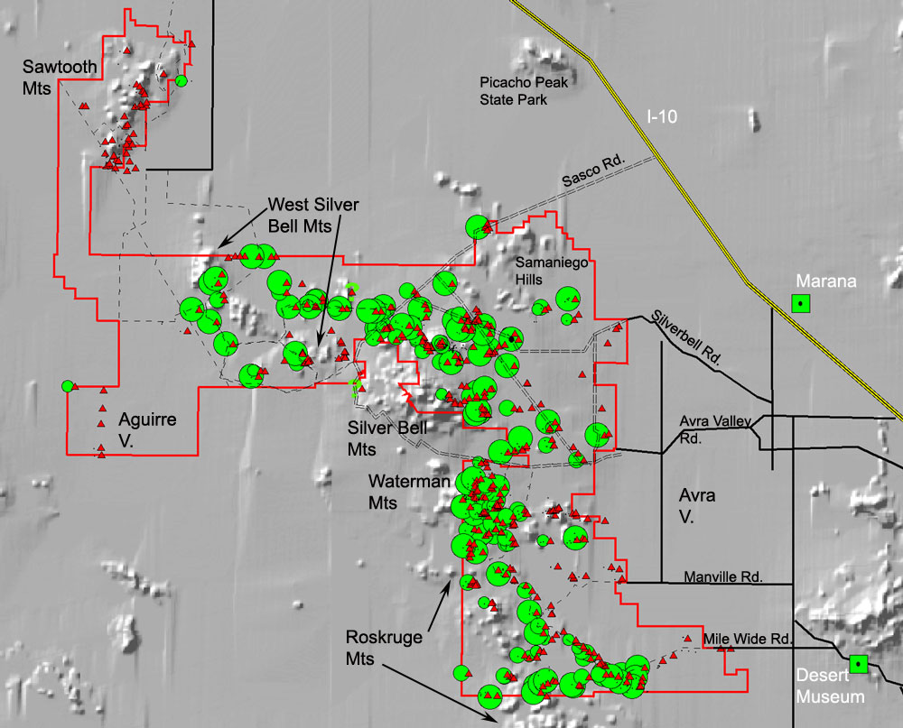 distribution of desert ironwood trees within ironwood forest national monument the size of the green circles indicates the relative abundance of ironwood
